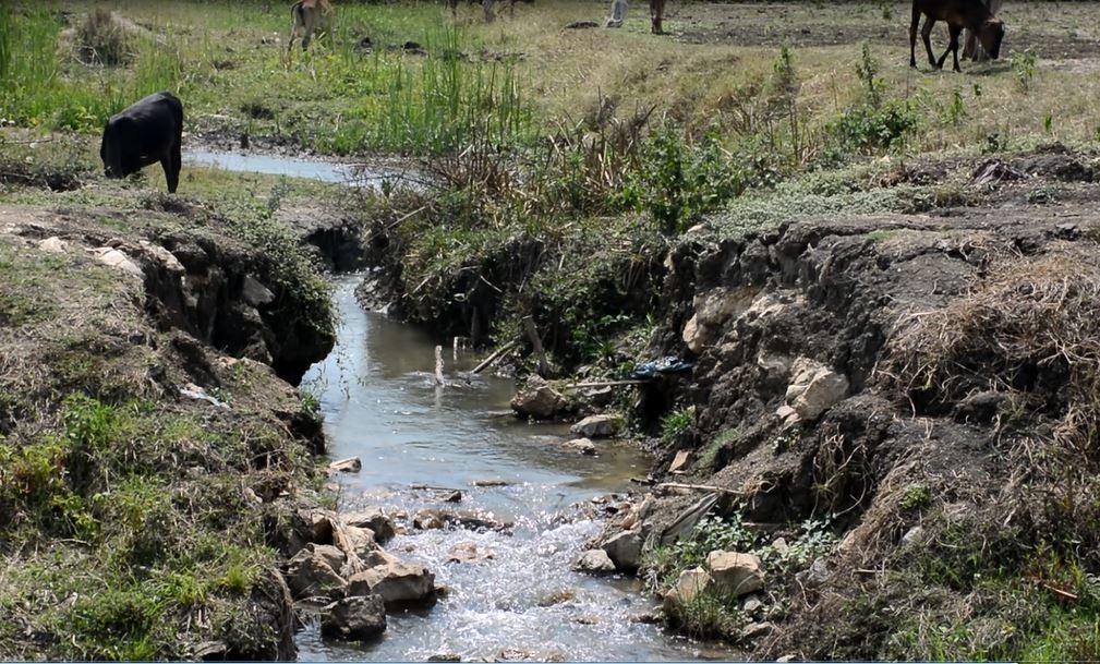 ရွာပေါင်း ၂ဝ အတွက် အကျိုးပြုမည့် ကုန်ထုတ်တံတား တည်ဆောက်ပေးရန် လိုလား