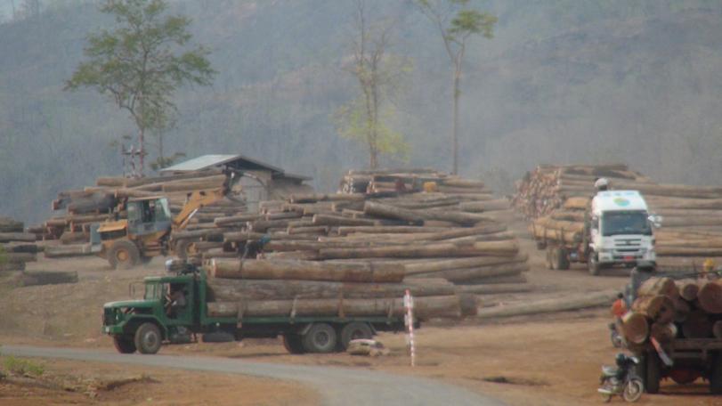 NRPC ၏ ခွင့်ပြုချက်ဖြင့် အရှေ့သံလွင်ရှိ ကျွန်းနှင့်သစ်မာ တန်ငါးထောင်ကို သယ်ဆောင်လာမည်